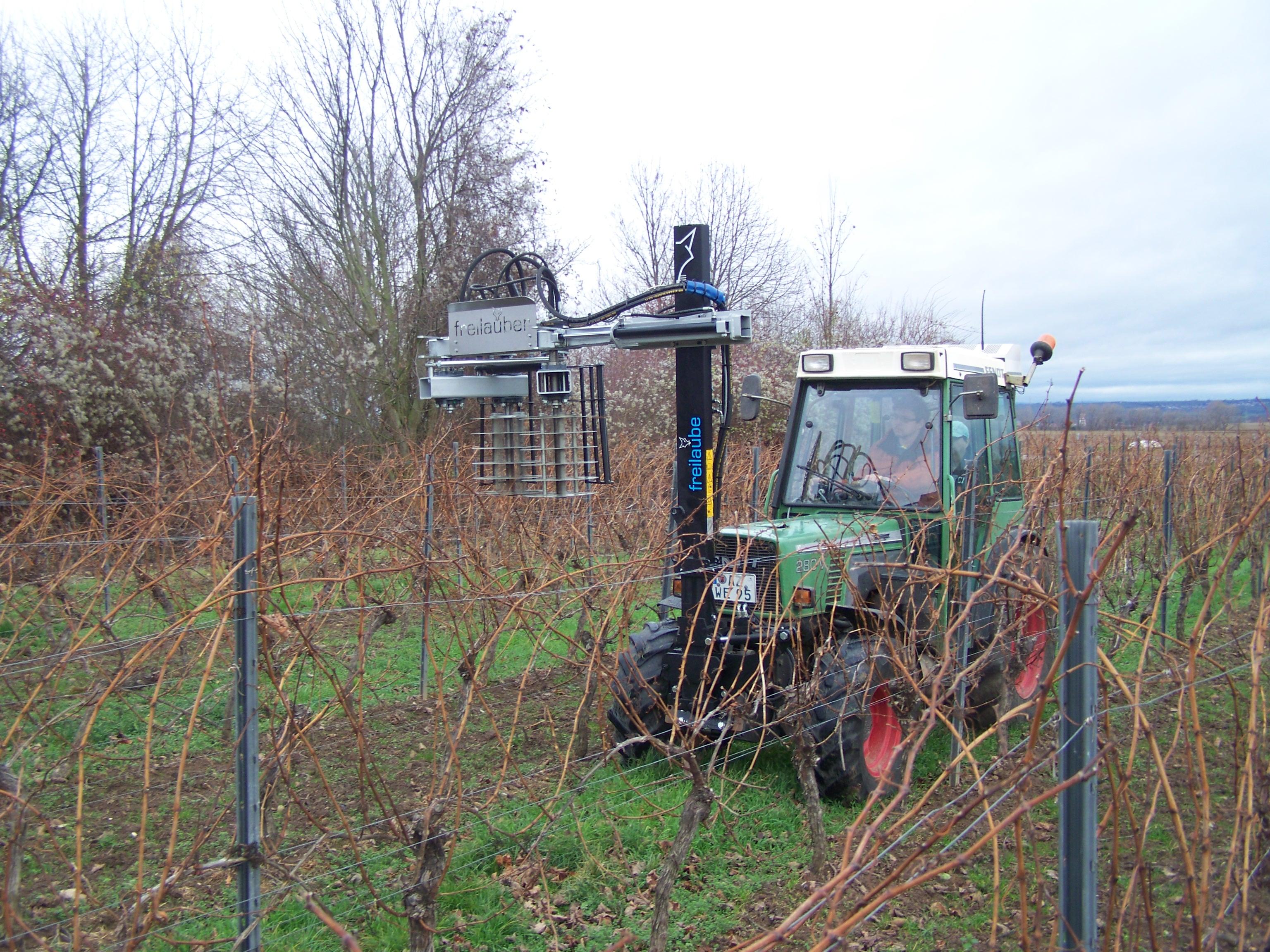 vinohrady sady