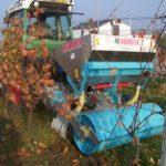 Podrývák hnojení vinice