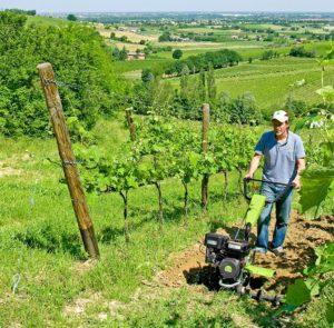 Rotavátor Grillo ve vinici/LPV agro