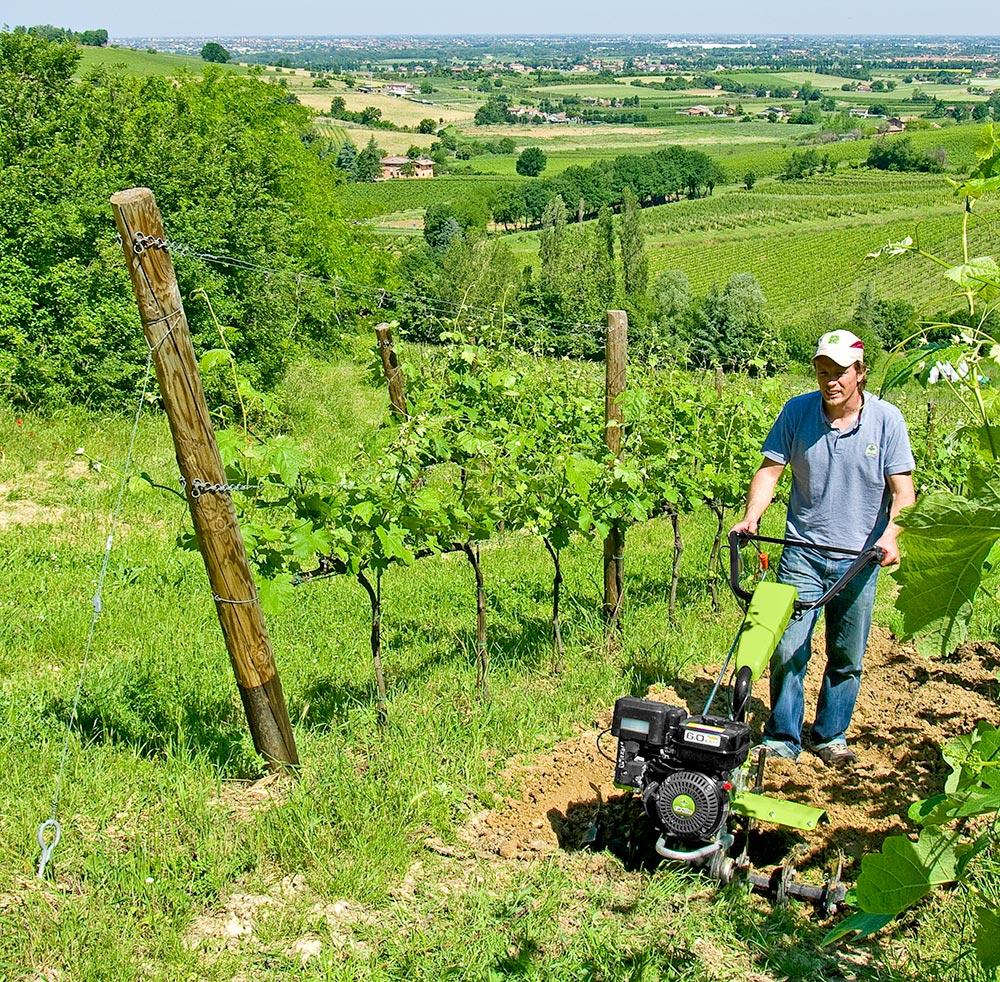 Rotavátor Grillo vinice